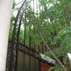 ロートアイアンによる壮大な式場ドームのアーチ状の装飾エレメント②
