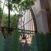 ロートアイアンによる壮大な式場ドームの外壁エレメント