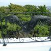 ベランダ部のロートアイアンのフェンス④